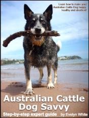 australian-cattle-dog-ebook